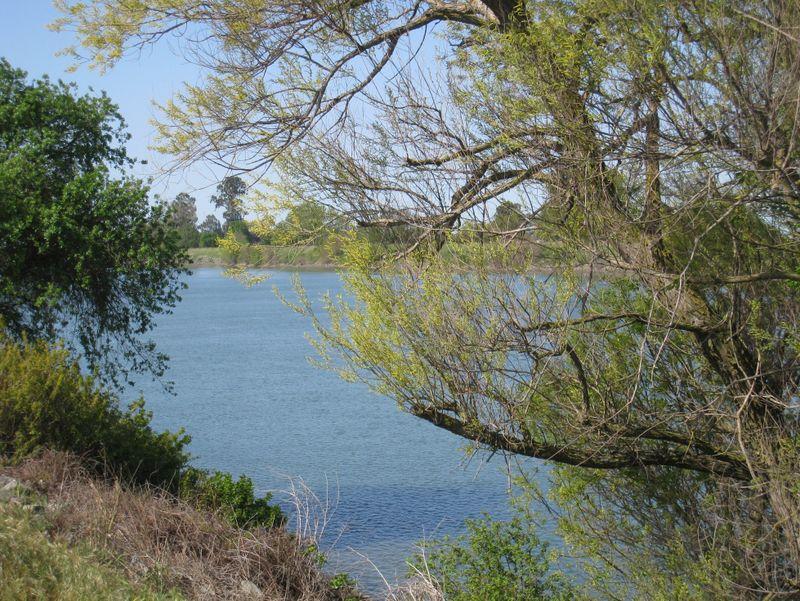 Sacramento-river-delta-2-04-2008-smaller